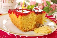 Torta del yogur con la jalea de fruta Imagen de archivo libre de regalías