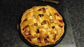 Torta della prugna e di Apple Fotografie Stock