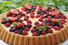 Torta della torta di frutta Immagini Stock