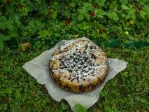 Torta di Blackberry sull'erba Fotografia Stock