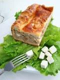 Torta di carne con formaggio Fotografia Stock Libera da Diritti