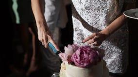 Torta di cerimonia nuziale di taglio dello sposo e della sposa video d archivio