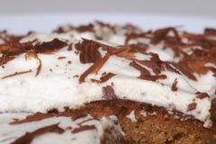 Torta di cioccolato con crema Fotografia Stock