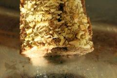 Torta di cioccolato con le noci Fotografia Stock Libera da Diritti