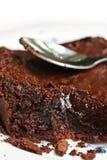 Torta di cioccolato saporita Fotografia Stock