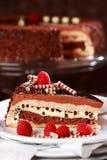Torta di cioccolato squisita Fotografia Stock Libera da Diritti