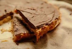Torta di cioccolato sulla zolla Fotografie Stock