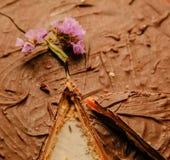 Torta di cioccolato sulla zolla Fotografie Stock Libere da Diritti