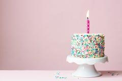 Torta di compleanno Immagine Stock Libera da Diritti