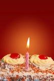 Torta di compleanno con una candela Fotografia Stock
