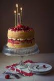 Torta di compleanno sul compleanno Fotografia Stock