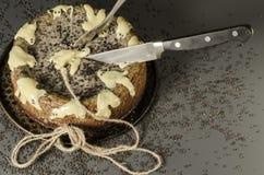 Torta di formaggio con i semi di sesamo neri su Halloween Immagini Stock