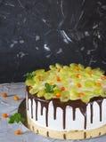 Torta di formaggio con l'uva delle bacche e del cioccolato e lo spincervino e la menta del ‹del †del ‹del †del mare Fotografia Stock