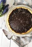 Torta di formaggio con la glassa del cioccolato Fotografia Stock Libera da Diritti