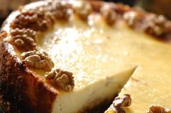 Torta di formaggio con le noci Fotografia Stock Libera da Diritti