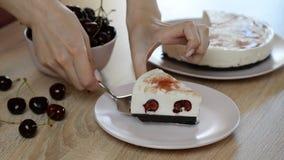 Torta di formaggio deliziosa e dolce con la gelatina della ciliegia archivi video