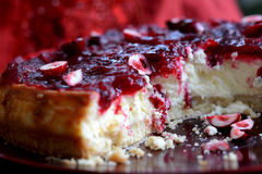 Torta di formaggio della vaniglia del mirtillo rosso Immagine Stock Libera da Diritti