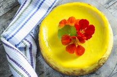 Torta di formaggio della zucca servita con l'asciugamano di cucina Fotografia Stock Libera da Diritti