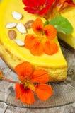 Torta di formaggio della zucca sulla lastra di vetro Fotografia Stock Libera da Diritti