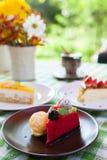 Torta di formaggio e gelato sul piatto con la guarnizione della frutta. fotografia stock libera da diritti