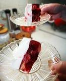 Torta di formaggio fredda polacca Immagini Stock
