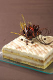 Torta di formaggio Tiramisu Fotografia Stock Libera da Diritti