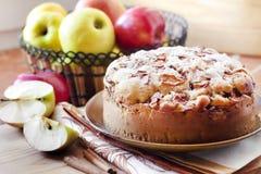 Torta di mele casalinga con cannella sul piatto fotografie stock libere da diritti