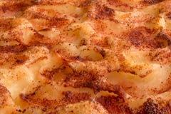 Torta di mele con cannella Fotografia Stock