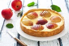 Torta di mele con le intere mele e crema rosse Fotografia Stock