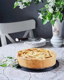 Torta di mele di Tsvetaeva con la ricotta, torta di formaggio russa con le mele Fotografia Stock