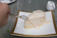 Torta di noce di cocco Fotografia Stock Libera da Diritti