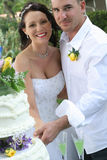 Torta di taglio dello sposo e della sposa fotografia stock