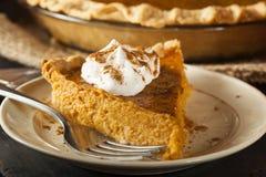 Torta di zucca casalinga per Thanksigiving Fotografia Stock Libera da Diritti