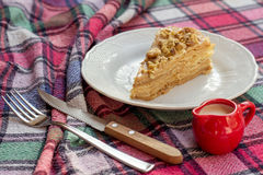 Torta do bolo de Napoleon com o tampão do leite Fotos de Stock Royalty Free
