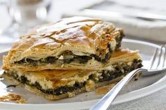 Torta do espinafre Foto de Stock Royalty Free