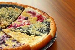 Torta do fruto Imagem de Stock