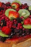 Torta do fruto Imagem de Stock Royalty Free