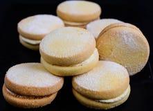 Torta dulce escocesa con crema Foto de archivo libre de regalías