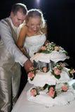 Torta felice di cerimonia nuziale e delle coppie Fotografia Stock Libera da Diritti