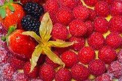 Torta fresca delle fragole di American National Standard dei lamponi Immagini Stock