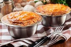 Torta fresca do guisado de carne imagens de stock