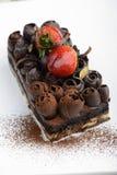 Torta húmeda del chocolate imagen de archivo libre de regalías