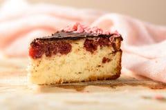 Torta hecha en casa con la formación de hielo del chocolate Fotografía de archivo