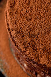 Torta hecha en casa del chocolate Fotografía de archivo libre de regalías