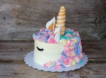 Torta hecha en casa hermosa bajo la forma de unicornio Imágenes de archivo libres de regalías