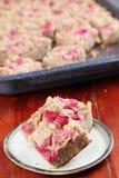 Torta integral del ruibarbo Fotos de archivo