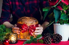 Torta italiana tradicional del panettone para la Navidad imagen de archivo libre de regalías