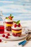 Torta, jalea y Berry Individual Trifles de la fruta fotos de archivo libres de regalías