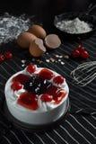 Torta mezclada de las bayas Fotografía de archivo libre de regalías
