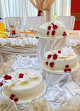 Torta nunziale bianca Immagini Stock